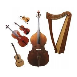 Оркестрови инструменти