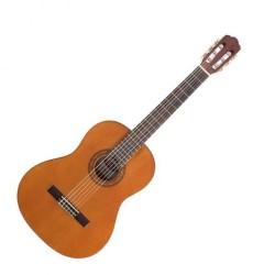 Акустични китари